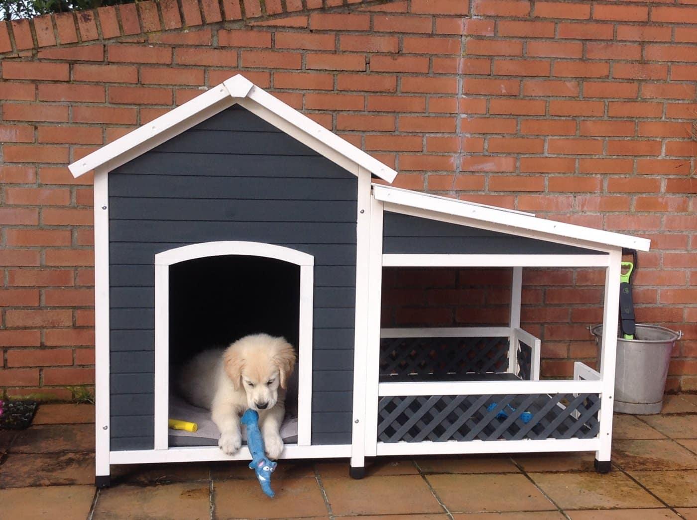 La niche pour chien