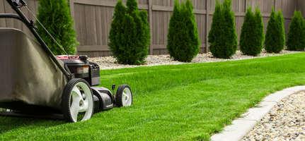 Comment prendre soin de son jardin en automne ?